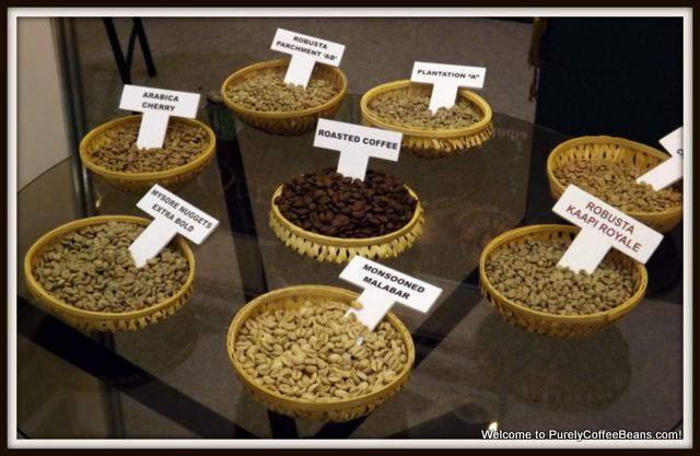 indian-coffee-samples